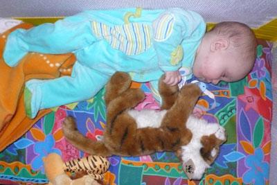 tiger mit tiger