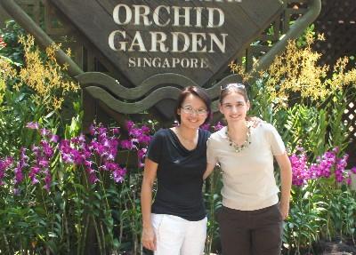 vor dem orchideengarten