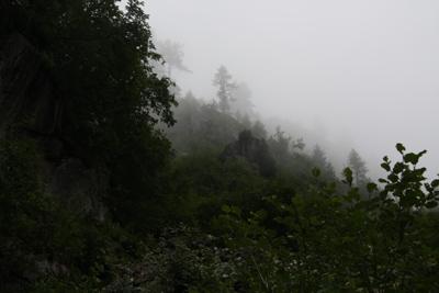 hasliberg im nebel
