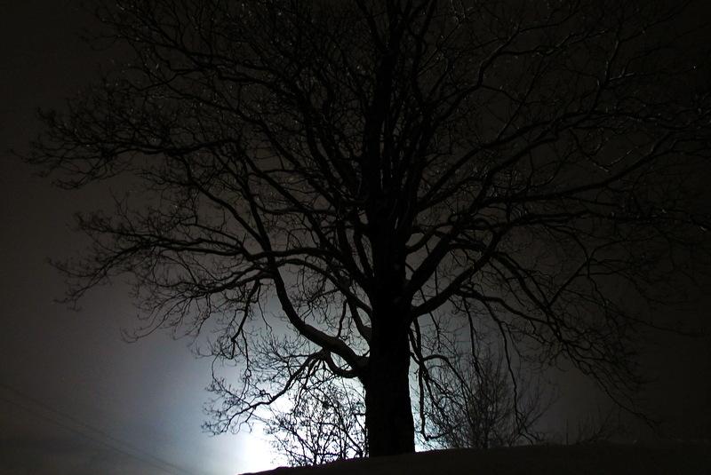 nachtabfahrt