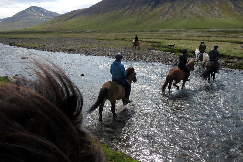 furt zu pferd