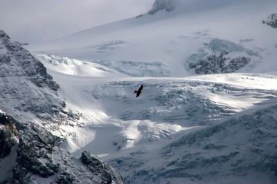 gletscheransichten