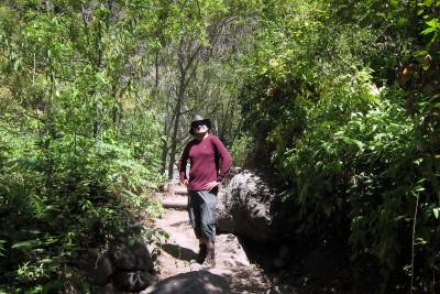 vegetationswechsel