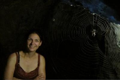 spinnenlicht