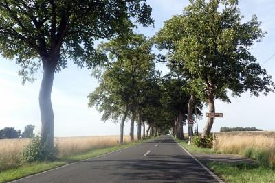 alleenstrasse