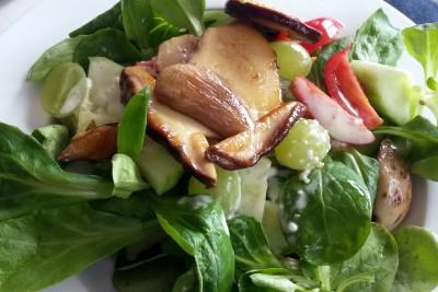 salat mit steinpilzen