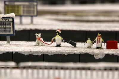 pinguinaustausch