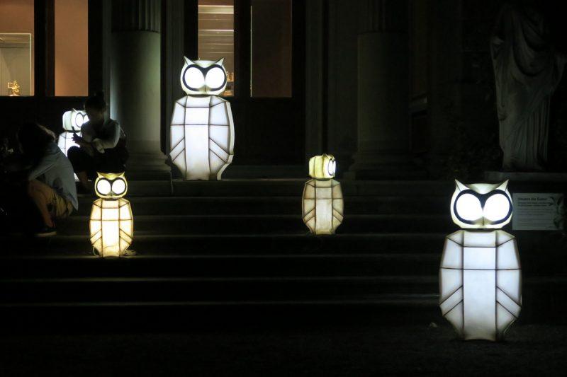 leuchteulen