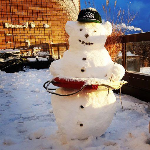 schneebär in der sonne